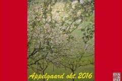 DC1610 Appelgaard (0)